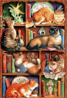 COBBLE HILL - Feline Bookcase