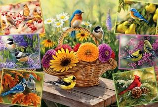 COBBLE HILL - Rosemary's Birds