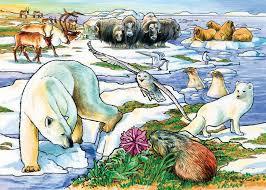 COBBLE HILL Arctic Adventure 58807