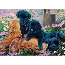 COBBLE HILL Black Lab Puppies 58851