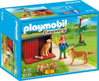 Golden Retrievers with Toy 6134