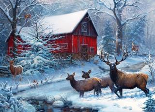 COBBLE HILL - Winter Magic