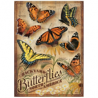 COBBLE HILL Backyard Butterflies 85006